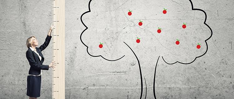 prix élagage d'arbres Aix-en-Provence